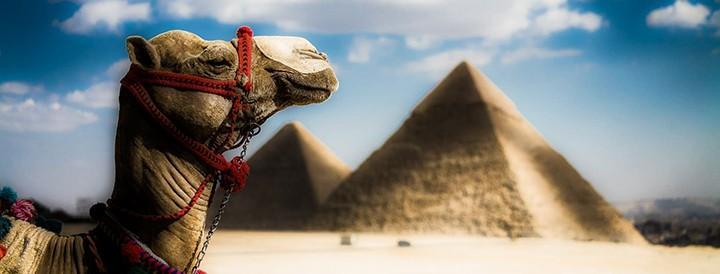 Египет все-таки открыли в 2017 году