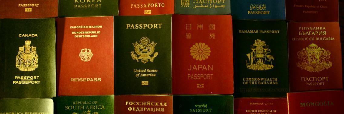 Что означает цвет твоего загранпаспорта