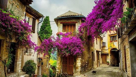 Регион Прованс — область прекрасной архитектуры и природы