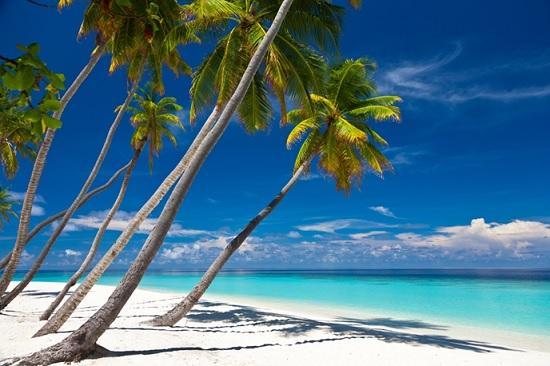 Календарь открытия границ: курорты Мексики, Кубы и Доминиканы готовятся к туристическому сезону