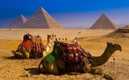 Новый посол России в Египте сообщил о датах открытия Каира, Хургады, Шарм-эль-Шейха