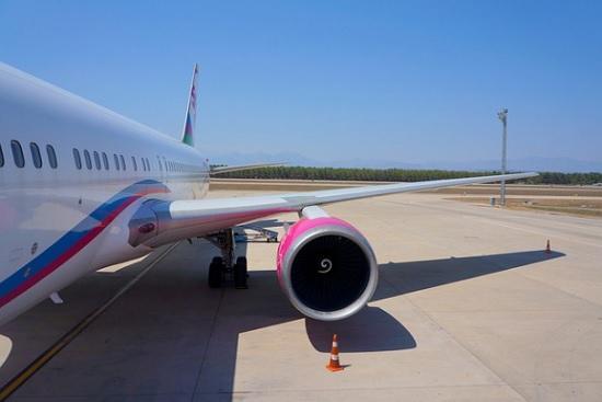 Российская Федерация открыла авиасообщение ещё с четырьмя государствами