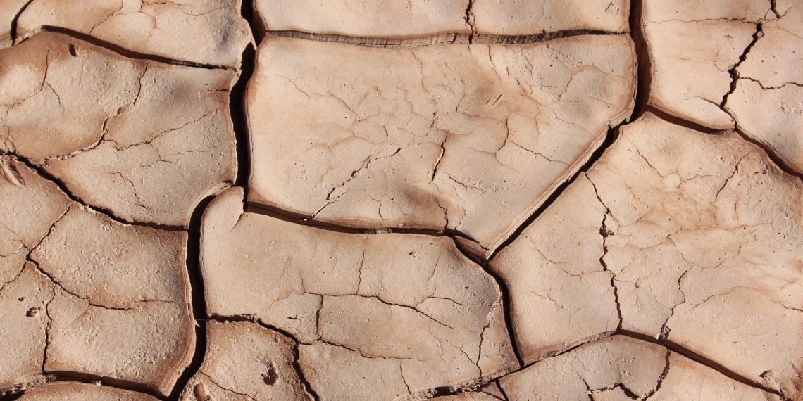 Учёные предложили способ спасти Землю от засухи