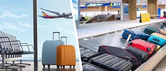 Бесплатный авиа — багаж отменяется — последний из лоукостеров объявил о введении платы