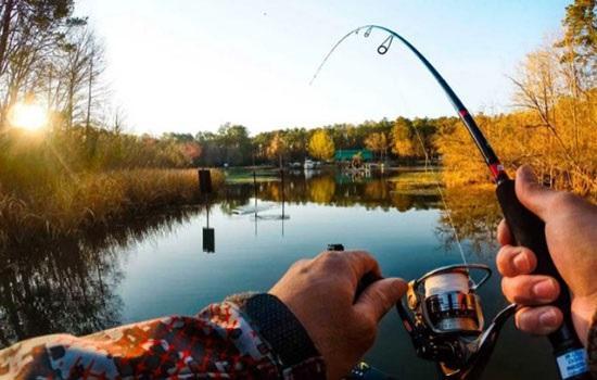 Что нужно для качественной рыбалки?